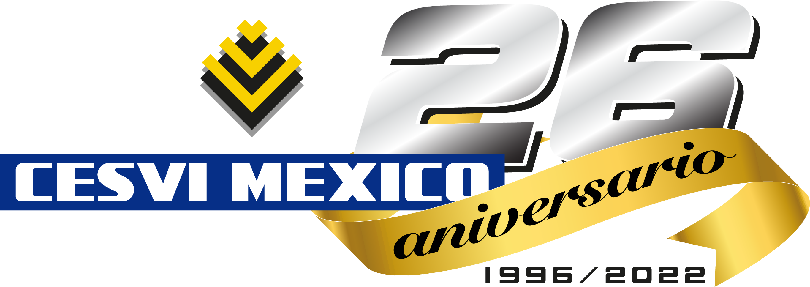 Image result for cesvi mexico